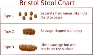 Bristol stool chart 1