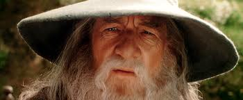 Gandalf ponders a management plan dilemma